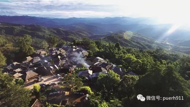 """景迈山的茶能否对人的长寿产生""""助力效应"""""""