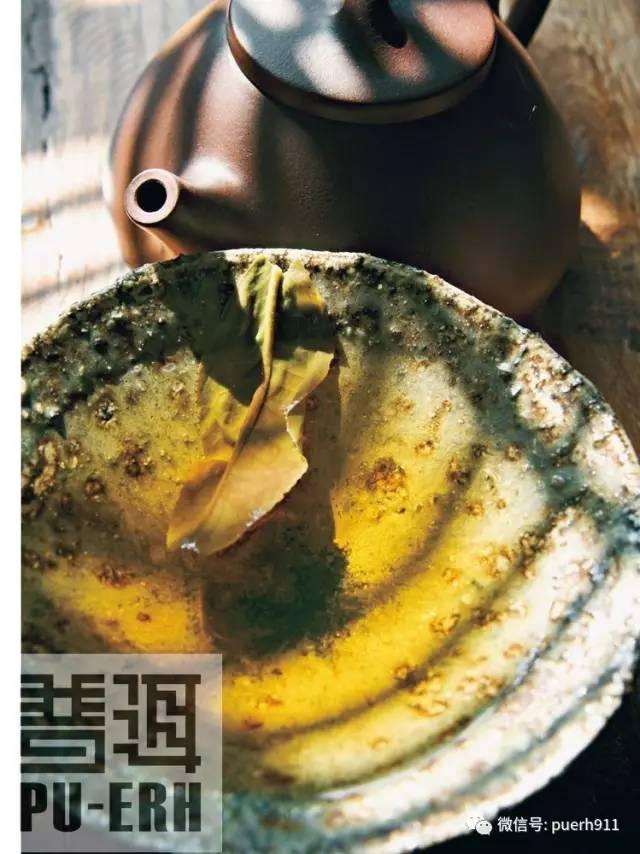 普洱茶中的单宁就是茶多酚吗?