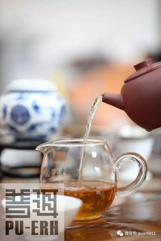普洱茶 有生命的古董